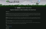 Organism Adaptations to Water Availability in the Cloud Forest