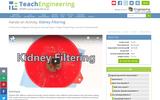 Kidney Filtering
