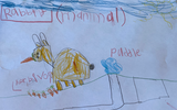 Animal Needs Research Project for K/1