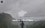 Ancient Life of Rice