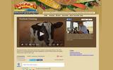 America's Heartland: Soybean Farming