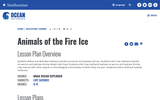 Animals of the Fire Ice
