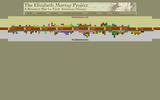 Timeline of Elizabeth Murray's Life: Interactive Timeline