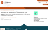 Activity 1A: Anatomy of the Human Eye