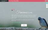 Fanciness Lost