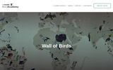 Wall of Birds