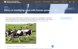 Ethics of Modifying Cows With Human Genes