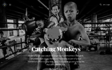 Catching Monkeys