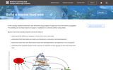 Build a Marine Food Web