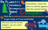 The Producers, Consumers, Decomposers Game