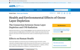 Health and Environmental Effects of Ozone Layer Depletion