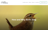 How and Why Birds Sing