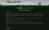 Water and Decomposition