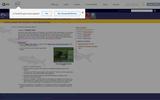 Activity 2: Flashy Fish