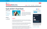 Cycle of Life 1: Food Chain