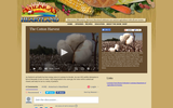 America's Heartland: The Cotton Harvest