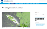 Are all algal blooms harmful?