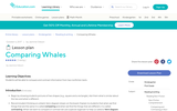 Lesson Plan: Comparing Whales